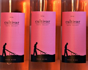 2014 Cultivar Napa Valley Rose